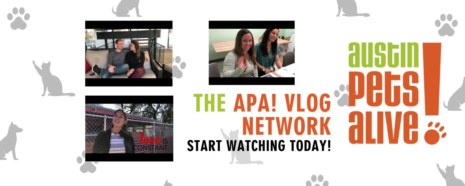 Vlog Homepage