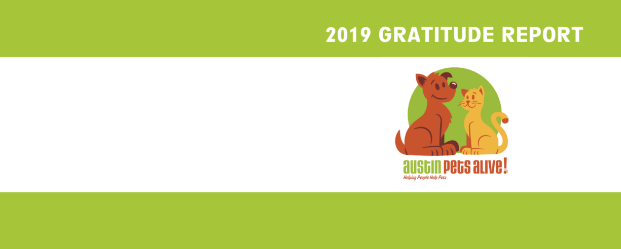 Gratitude Report Banner