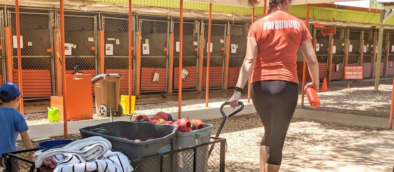 Volunteerworking