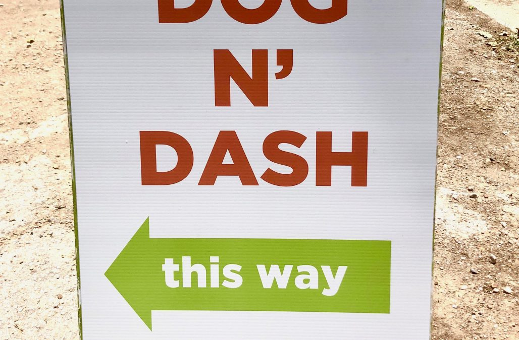 Dogn Dash Thumbnail