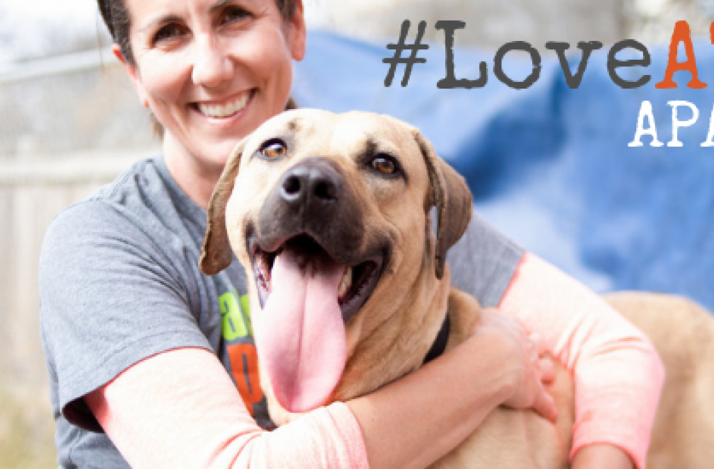 Love ATXPets Blog
