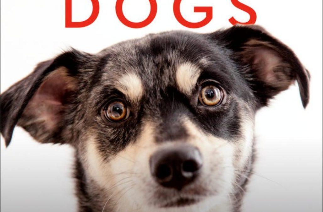 Rescue Dogs Book