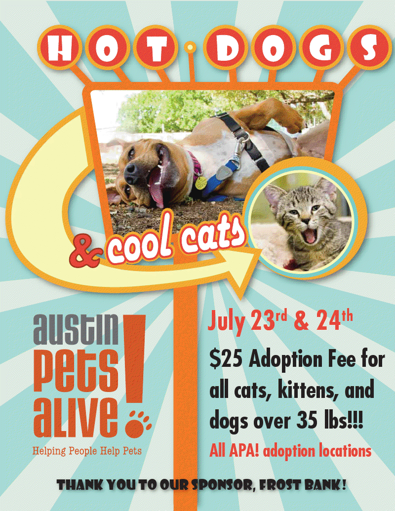 austin pets alive hot dogs and cool cats   this weekend