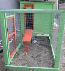 Austin Pets Alive! Barn Cat Program - Austin Pets Alive!