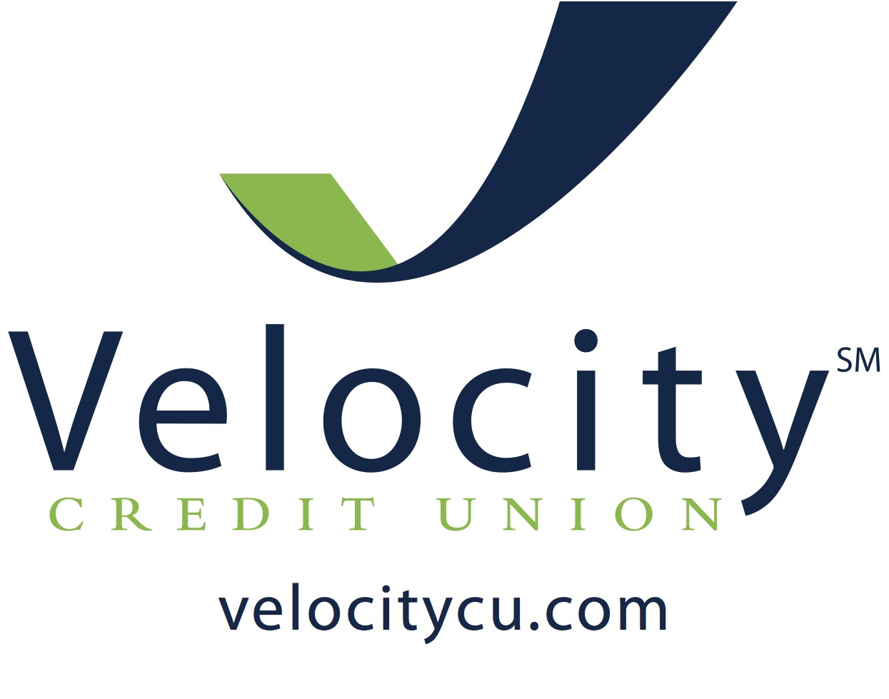 Velocity Logo with web color