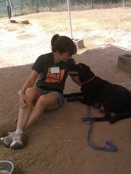 Volunteering at APA Dog Walkers