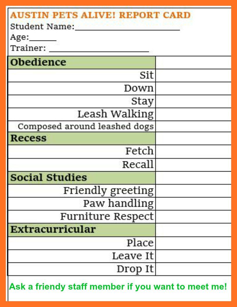 APA Report Card